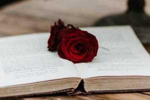 Winter Wedding Flower Inspiration- Red roses on an open book
